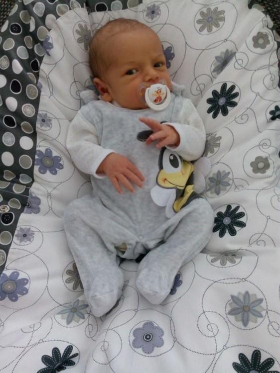 Zlatka - pelíšek pro miminko, Louka šedá